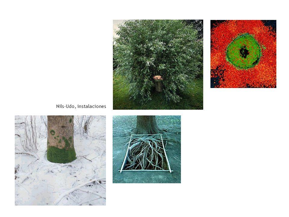 Nils-Udo, instalaciones