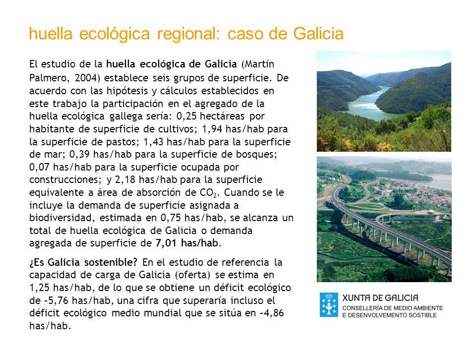 huella ecológica regional: caso de Galicia El estudio de la huella ecológica de Galicia (Martín Palmero, 2004) establece seis grupos de superficie. De