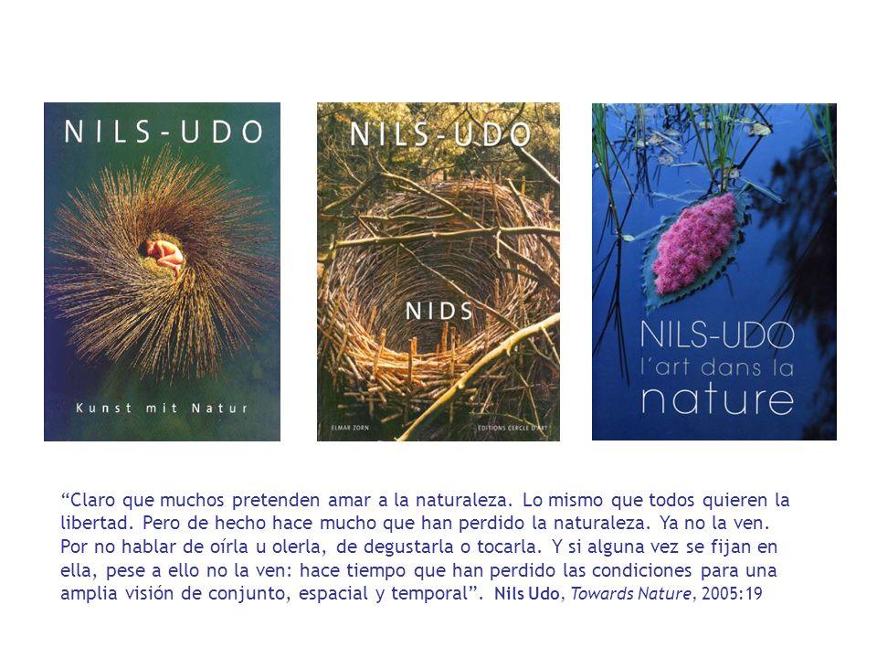 huella ecológica regional: caso de Galicia El estudio de la huella ecológica de Galicia (Martín Palmero, 2004) establece seis grupos de superficie.