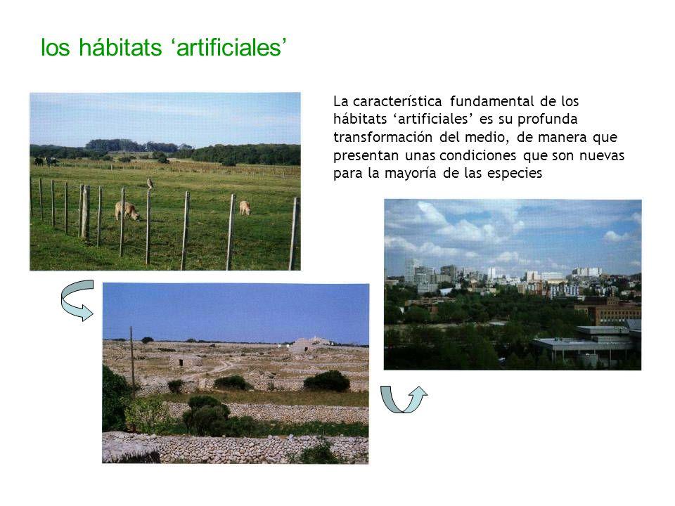 los hábitats artificiales La característica fundamental de los hábitats artificiales es su profunda transformación del medio, de manera que presentan