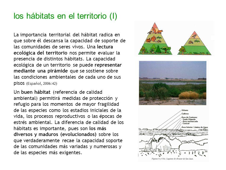 los hábitats en el territorio (I) La importancia territorial del hábitat radica en que sobre él descansa la capacidad de soporte de las comunidades de