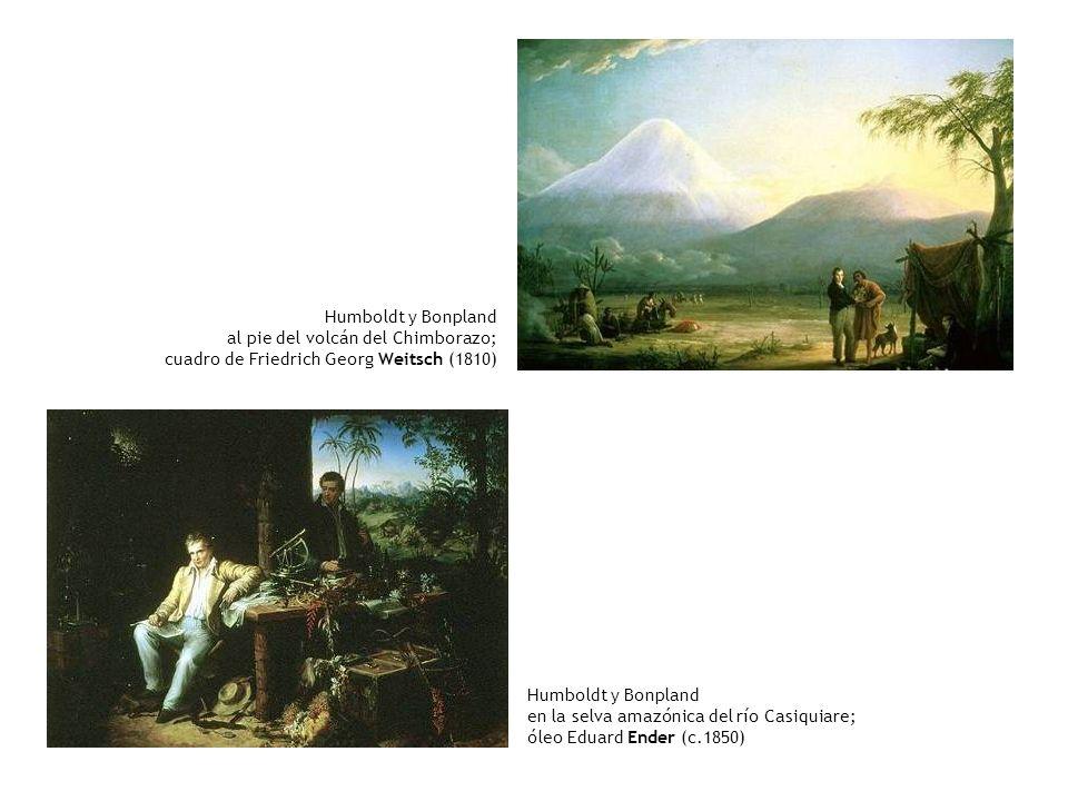 Humboldt y Bonpland al pie del volcán del Chimborazo; cuadro de Friedrich Georg Weitsch (1810) Humboldt y Bonpland en la selva amazónica del río Casiq