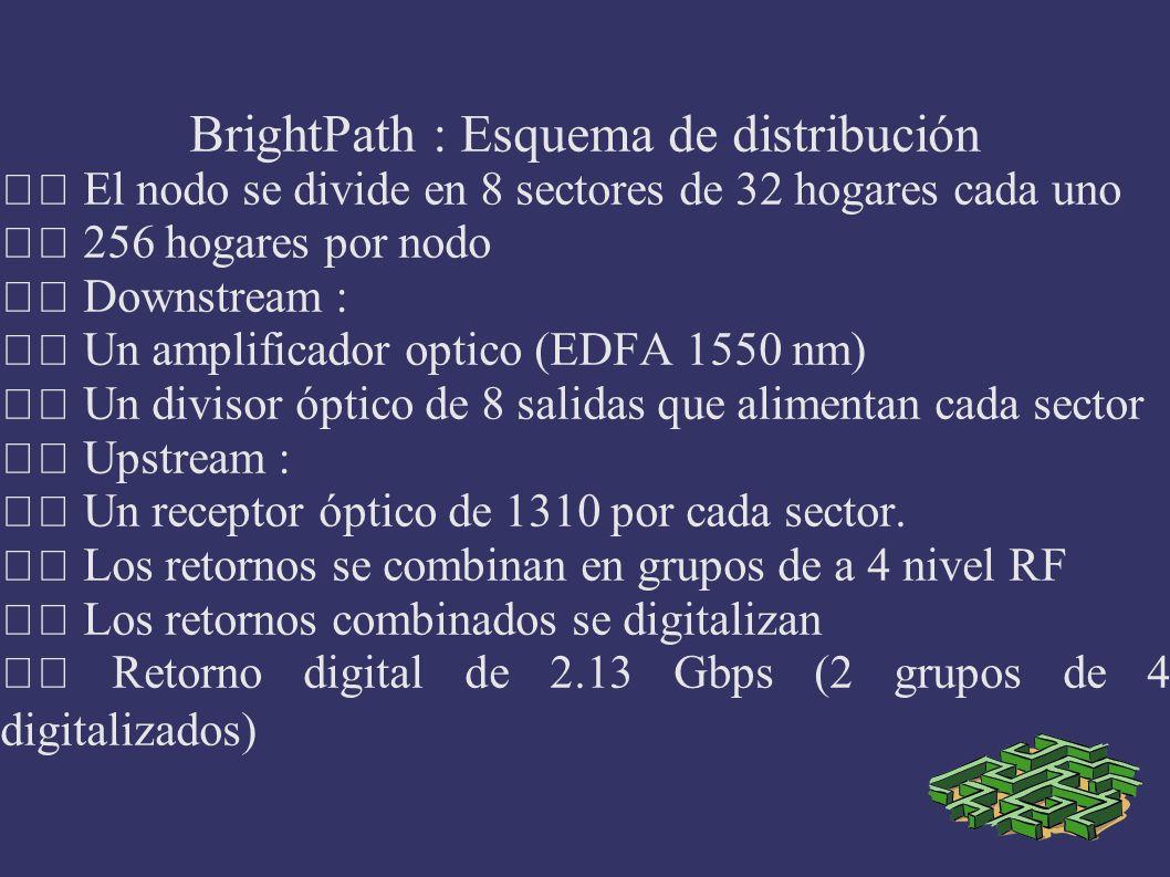 BrightPath : Esquema de distribución El nodo se divide en 8 sectores de 32 hogares cada uno 256 hogares por nodo Downstream : Un amplificador optico (