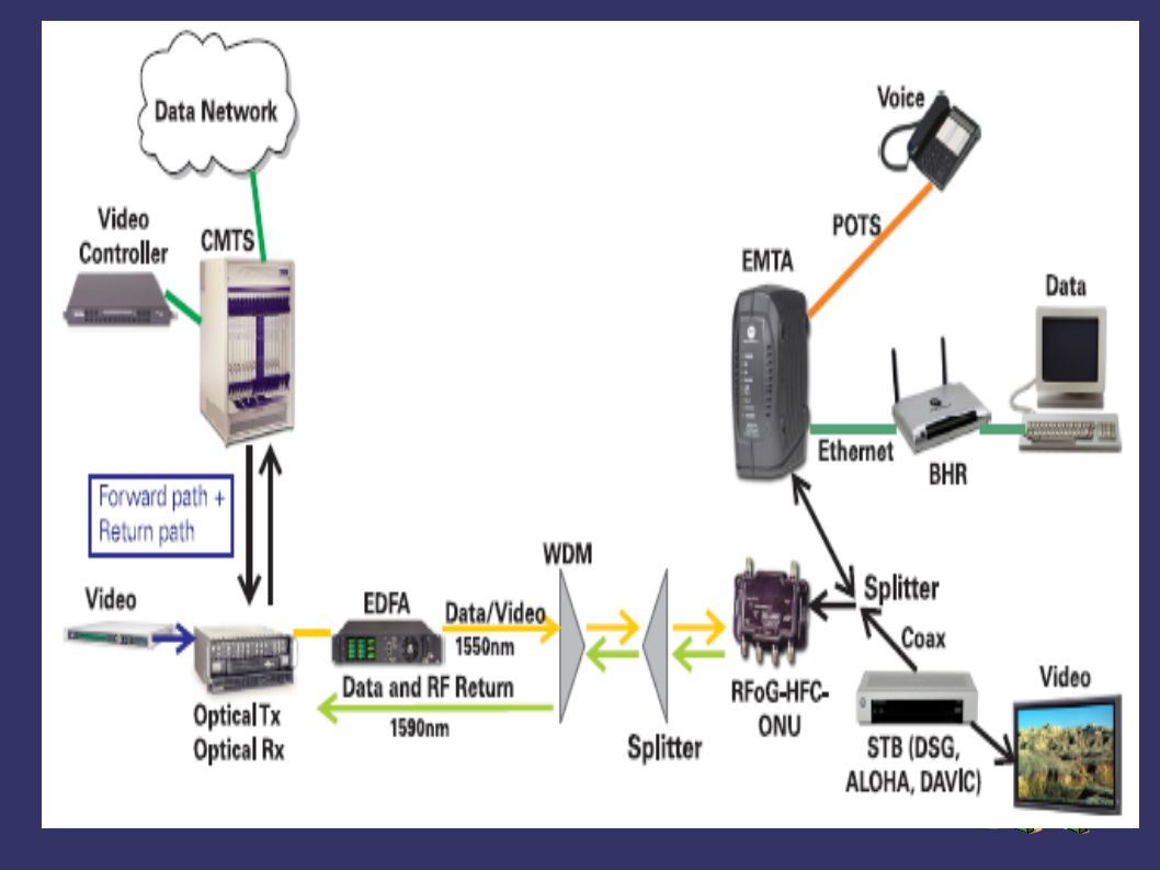 BrightPath : Esquema de distribución El nodo se divide en 8 sectores de 32 hogares cada uno 256 hogares por nodo Downstream : Un amplificador optico (EDFA 1550 nm) Un divisor óptico de 8 salidas que alimentan cada sector Upstream : Un receptor óptico de 1310 por cada sector.