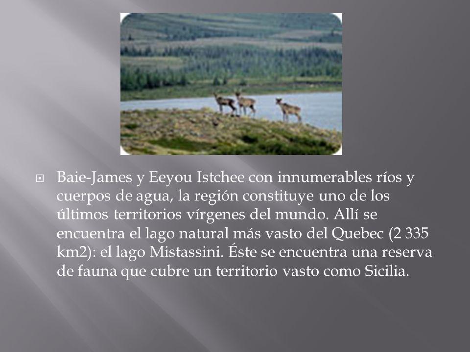 Baie-James y Eeyou Istchee con innumerables ríos y cuerpos de agua, la región constituye uno de los últimos territorios vírgenes del mundo. Allí se en
