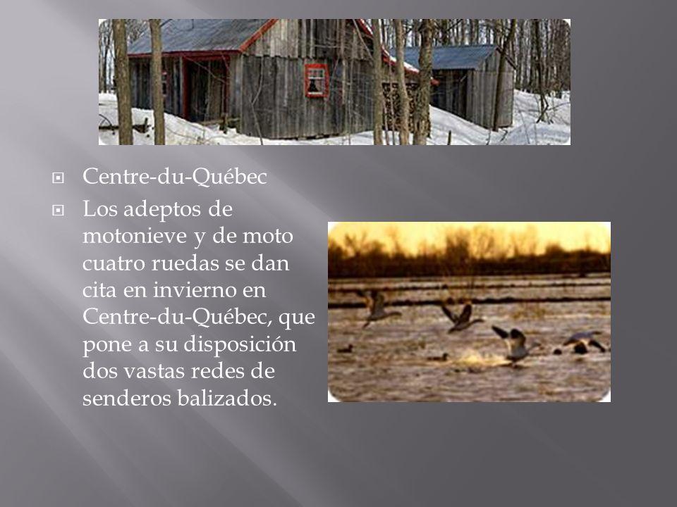 Centre-du-Québec Los adeptos de motonieve y de moto cuatro ruedas se dan cita en invierno en Centre-du-Québec, que pone a su disposición dos vastas re