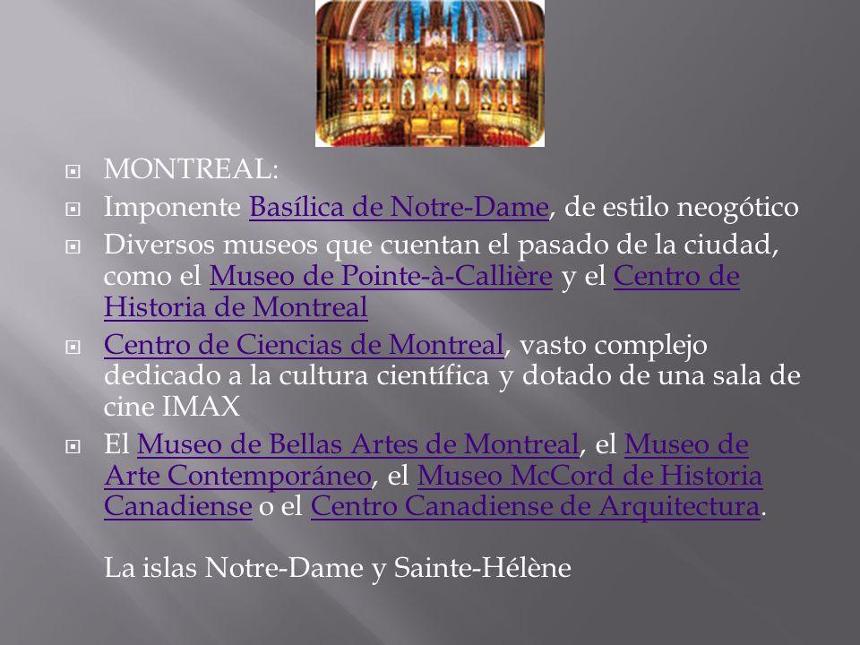 MONTREAL: Imponente Basílica de Notre-Dame, de estilo neogóticoBasílica de Notre-Dame Diversos museos que cuentan el pasado de la ciudad, como el Muse