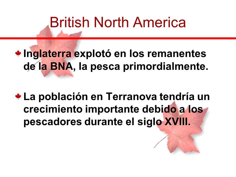 Inglaterra explotó en los remanentes de la BNA, la pesca primordialmente. La población en Terranova tendría un crecimiento importante debido a los pes