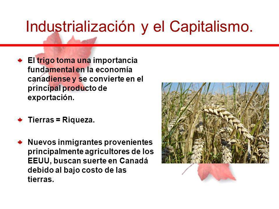 El trigo toma una importancia fundamental en la economía canadiense y se convierte en el principal producto de exportación. Tierras = Riqueza. Nuevos