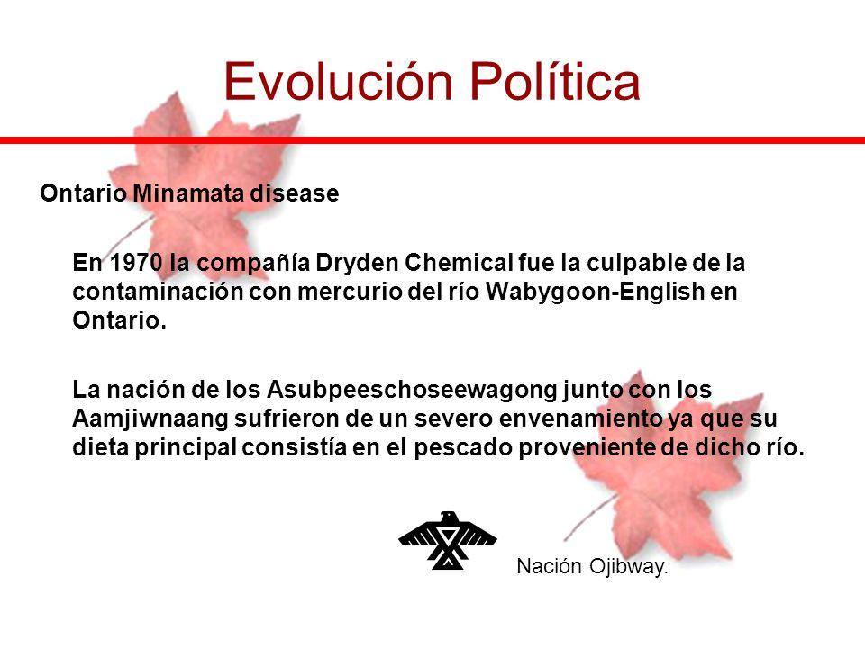 Ontario Minamata disease En 1970 la compañía Dryden Chemical fue la culpable de la contaminación con mercurio del río Wabygoon-English en Ontario. La