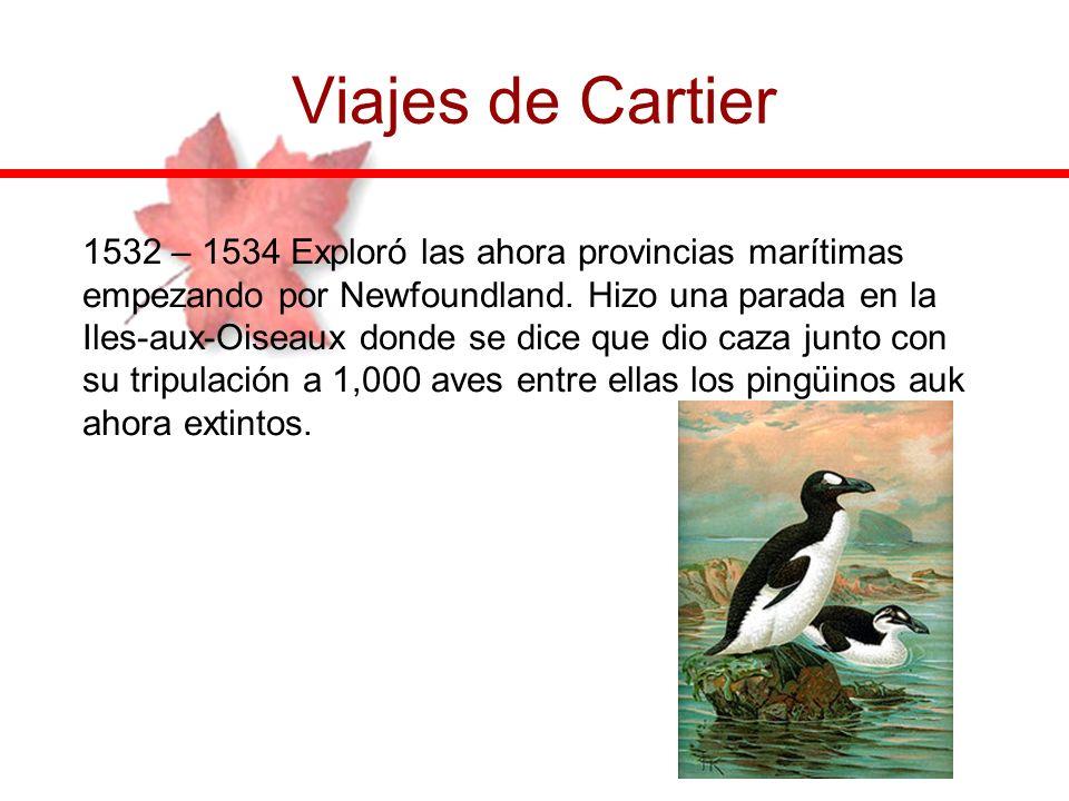 Viajes de Cartier 1532 – 1534 Exploró las ahora provincias marítimas empezando por Newfoundland. Hizo una parada en la Iles-aux-Oiseaux donde se dice