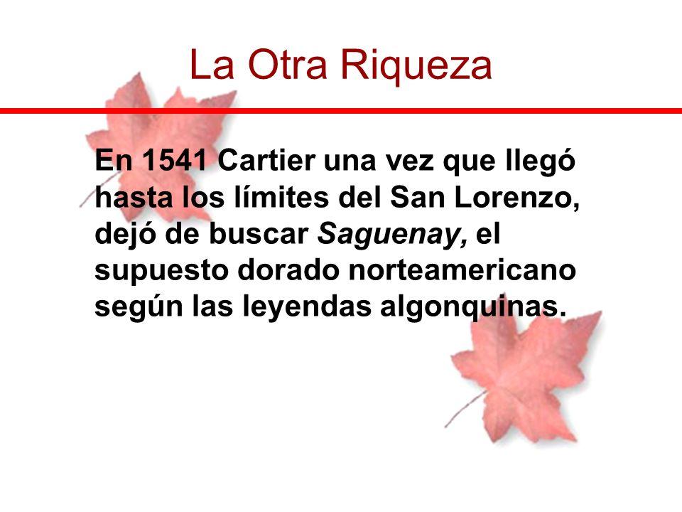 En 1541 Cartier una vez que llegó hasta los límites del San Lorenzo, dejó de buscar Saguenay, el supuesto dorado norteamericano según las leyendas alg