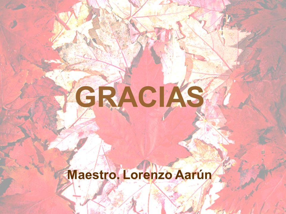 Maestro. Lorenzo Aarún GRACIAS