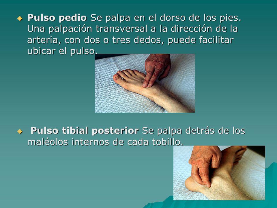 Pulso pedio Se palpa en el dorso de los pies. Una palpación transversal a la dirección de la arteria, con dos o tres dedos, puede facilitar ubicar el