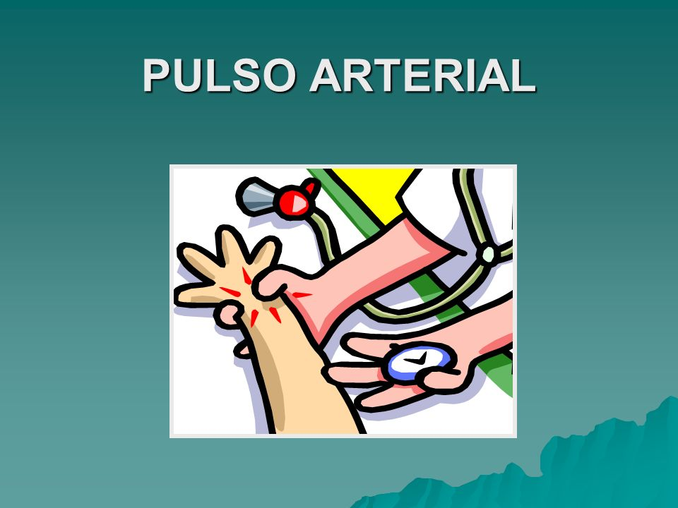 Arteria temporal superficial Arteria carótida Arteria subclavia Arteria axilar Arteria braquial Arteria femoral Arteria poplítea Arteria tibial posterior Arteria pedia Arterias radial y cubital