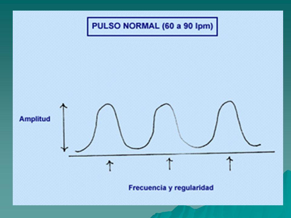 Contar el número de pulsaciones en 60 seg.Contar el número de pulsaciones en 60 seg.