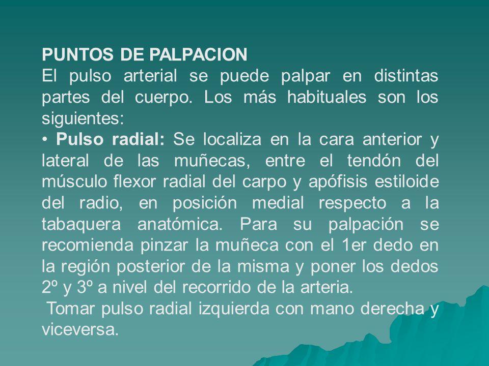 PUNTOS DE PALPACION El pulso arterial se puede palpar en distintas partes del cuerpo. Los más habituales son los siguientes: Pulso radial: Se localiza