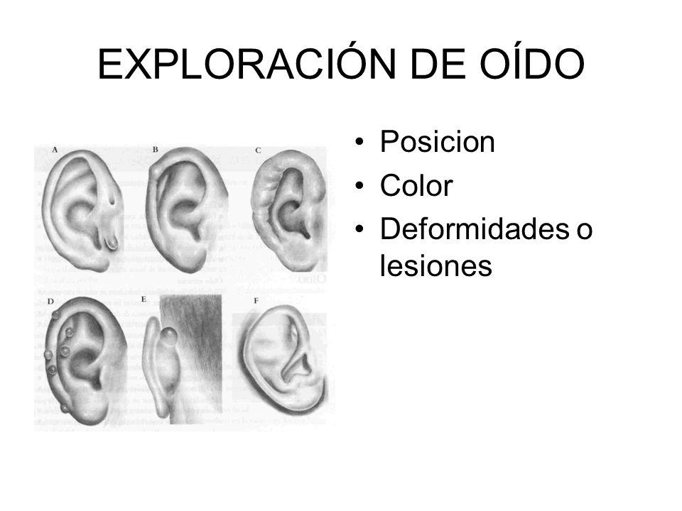 Inspeccione los pabellones auriculares y la region mastoidea en cuanto ha. Tamaño Forma Simetria Hitos