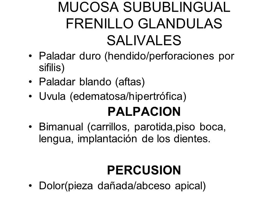 LENGUA –Macroglosis (cretinismo/acrome galia/mongolismo/ glositis/enf. Neoplasicas) –Porción lateral –Papilas –Movimientos