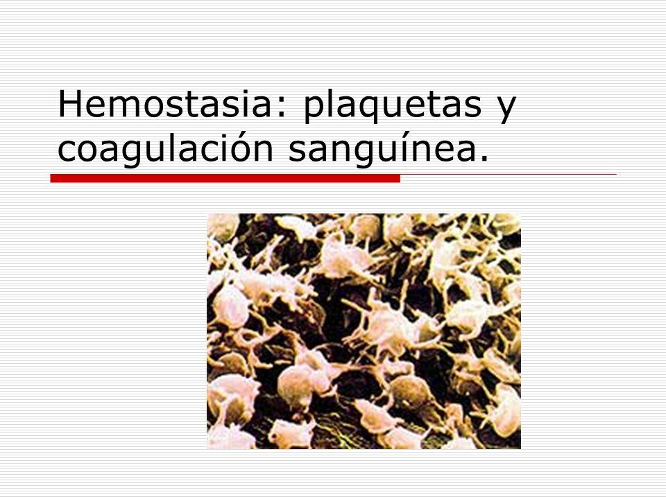 Hemostasia: plaquetas y coagulación sanguínea.