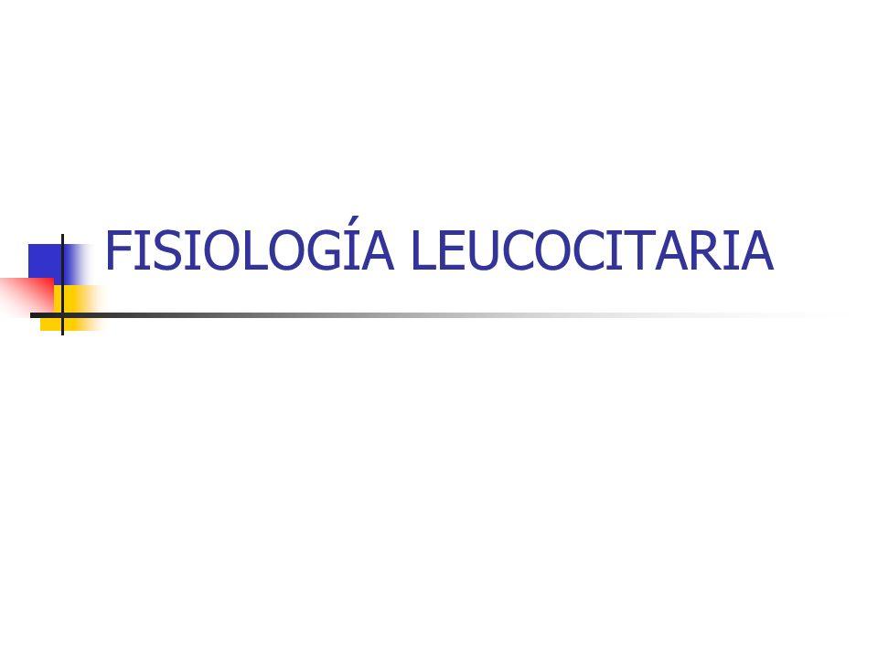 FISIOLOGÍA LEUCOCITARIA