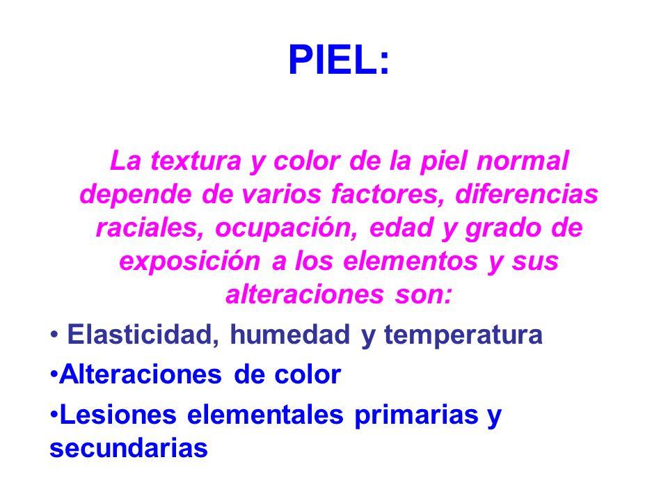 PIEL: La textura y color de la piel normal depende de varios factores, diferencias raciales, ocupación, edad y grado de exposición a los elementos y s
