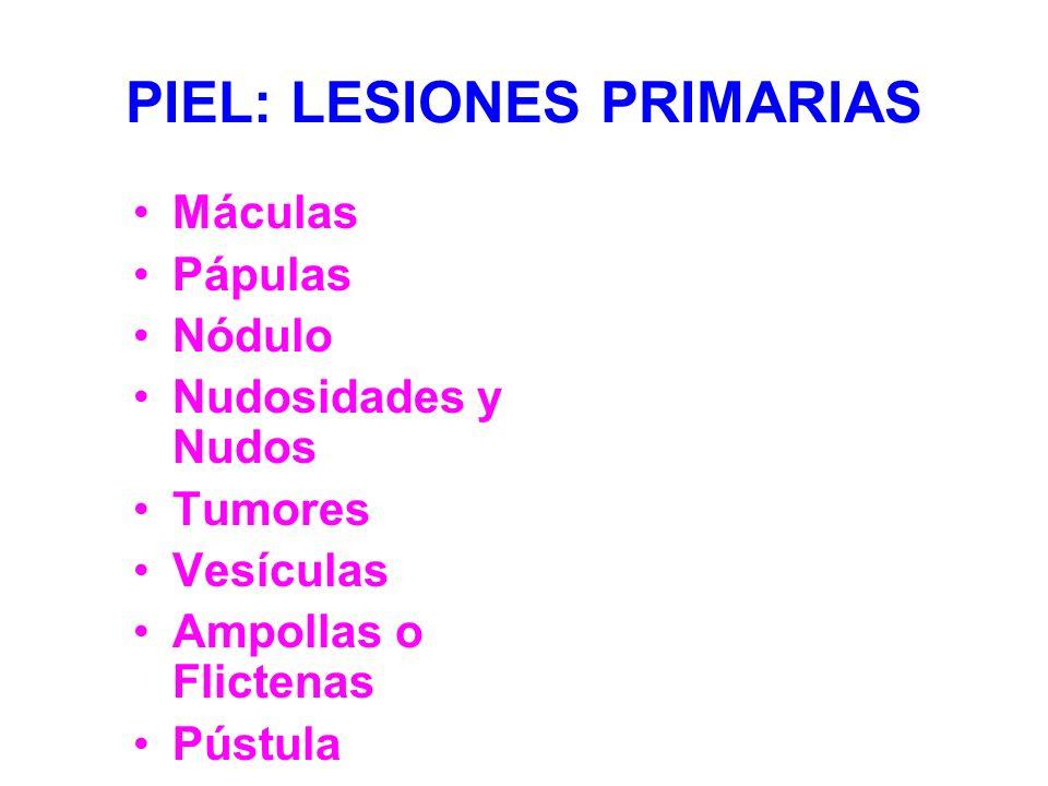 PIEL: LESIONES PRIMARIAS Máculas Pápulas Nódulo Nudosidades y Nudos Tumores Vesículas Ampollas o Flictenas Pústula Escamas
