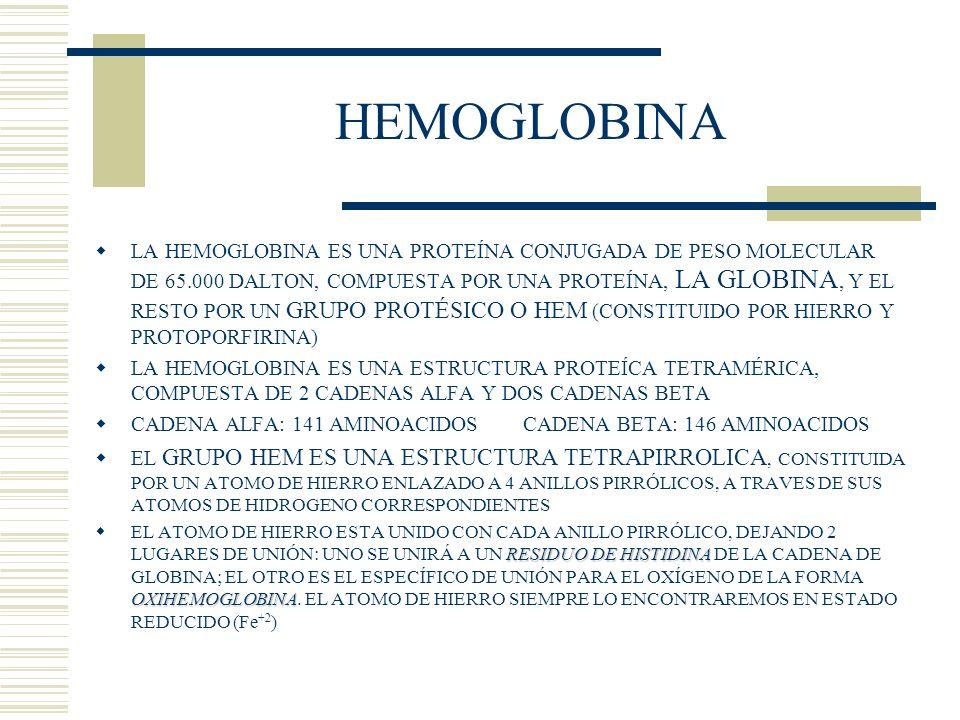 LA HEMOGLOBINA ES UNA PROTEÍNA CONJUGADA DE PESO MOLECULAR DE 65.000 DALTON, COMPUESTA POR UNA PROTEÍNA, LA GLOBINA, Y EL RESTO POR UN GRUPO PROTÉSICO