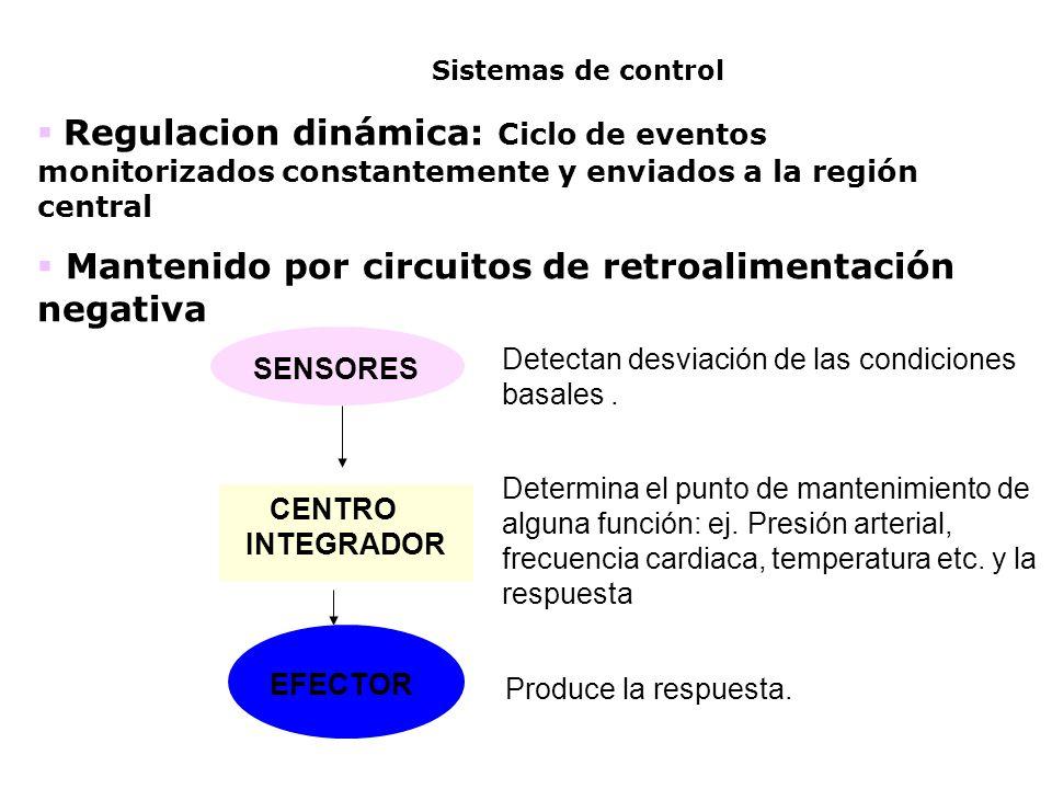 Detectan desviación de las condiciones basales. Determina el punto de mantenimiento de alguna función: ej. Presión arterial, frecuencia cardiaca, temp
