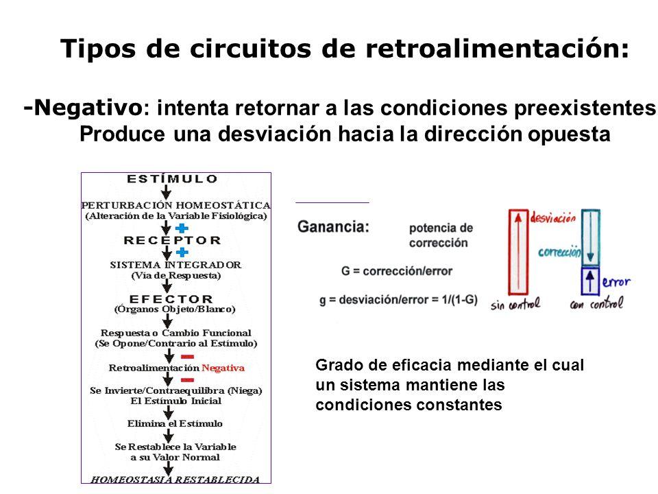 Tipos de circuitos de retroalimentación: -Negativo : intenta retornar a las condiciones preexistentes. Produce una desviación hacia la dirección opues