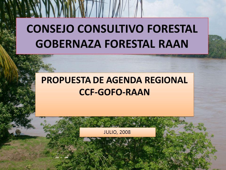 CONSEJO CONSULTIVO FORESTAL GOBERNAZA FORESTAL RAAN PROPUESTA DE AGENDA REGIONAL CCF-GOFO-RAAN JULIO, 2008
