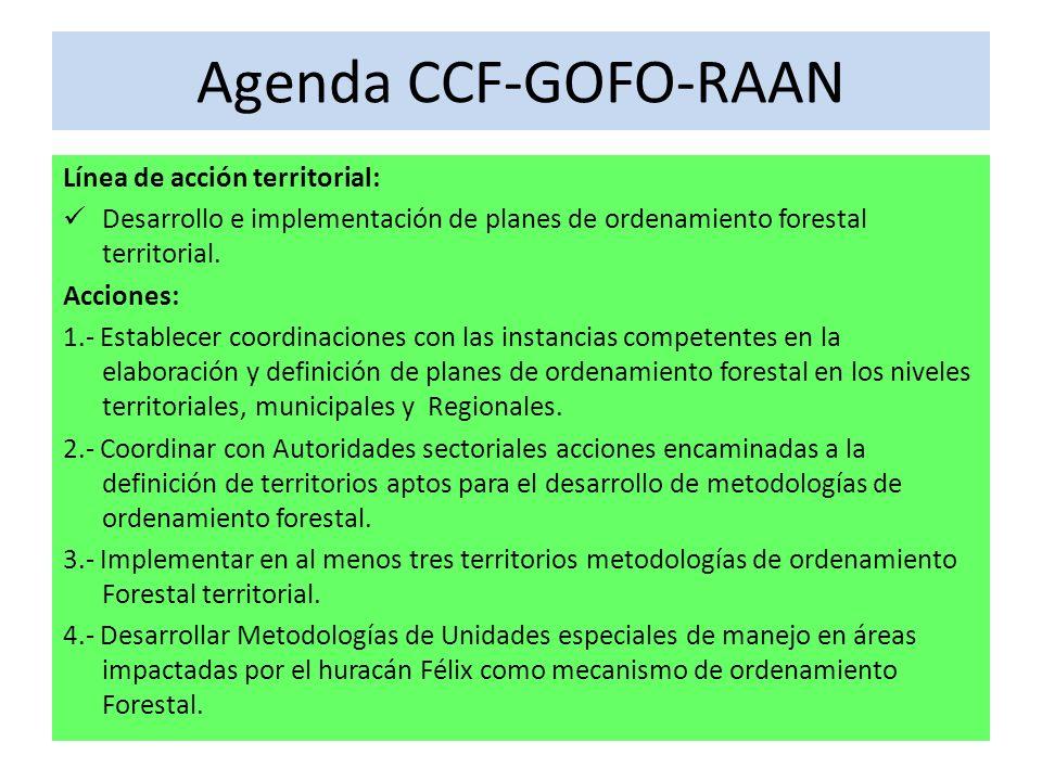 Agenda CCF-GOFO-RAAN Línea de acción territorial: Desarrollo e implementación de planes de ordenamiento forestal territorial.