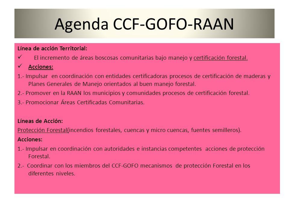 Agenda CCF-GOFO-RAAN Línea de acción Territorial: El incremento de áreas boscosas comunitarias bajo manejo y certificación forestal.