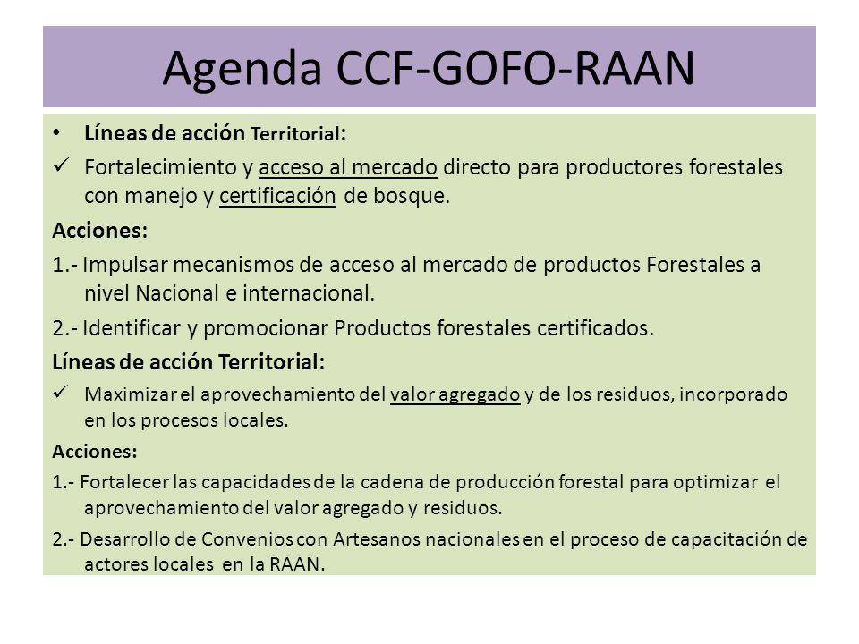 Agenda CCF-GOFO-RAAN Líneas de acción Territorial : Fortalecimiento y acceso al mercado directo para productores forestales con manejo y certificación de bosque.