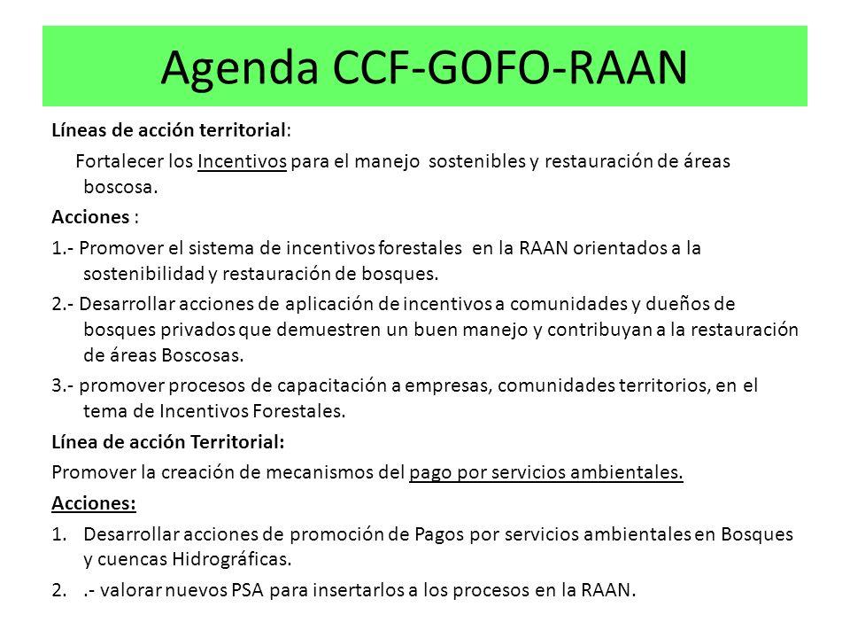 Agenda CCF-GOFO-RAAN Líneas de acción territorial: Fortalecer los Incentivos para el manejo sostenibles y restauración de áreas boscosa.