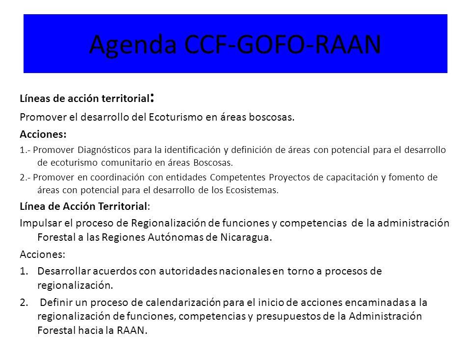 Agenda CCF-GOFO-RAAN Líneas de acción territorial : Promover el desarrollo del Ecoturismo en áreas boscosas.