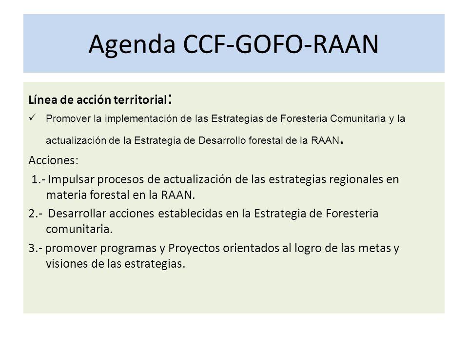 Agenda CCF-GOFO-RAAN Línea de acción territorial : Promover la implementación de las Estrategias de Foresteria Comunitaria y la actualización de la Estrategia de Desarrollo forestal de la RAAN.