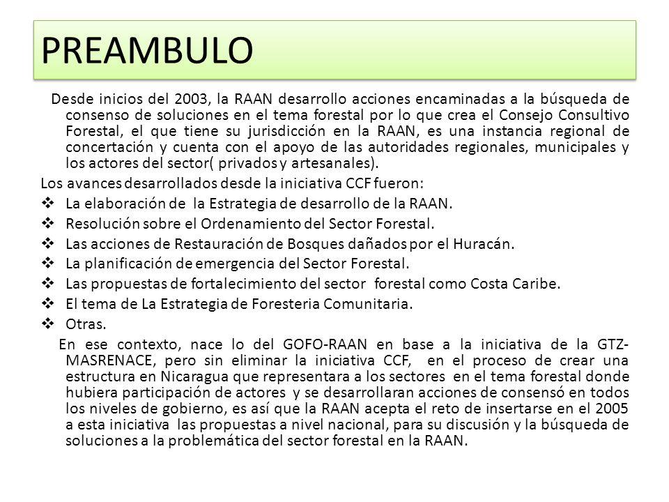 PREAMBULO Desde inicios del 2003, la RAAN desarrollo acciones encaminadas a la búsqueda de consenso de soluciones en el tema forestal por lo que crea el Consejo Consultivo Forestal, el que tiene su jurisdicción en la RAAN, es una instancia regional de concertación y cuenta con el apoyo de las autoridades regionales, municipales y los actores del sector( privados y artesanales).