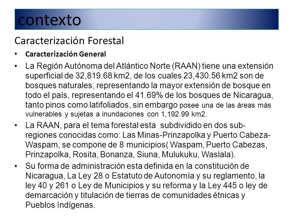 contexto Caracterización Forestal Caracterización General La Región Autónoma del Atlántico Norte (RAAN) tiene una extensión superficial de 32,819.68 km2, de los cuales 23,430.56 km2 son de bosques naturales, representando la mayor extensión de bosque en todo el país, representando el 41.69% de los bosques de Nicaragua, tanto pinos como latifoliados, sin embargo posee una de las áreas más vulnerables y sujetas a inundaciones con 1,192.99 km2.