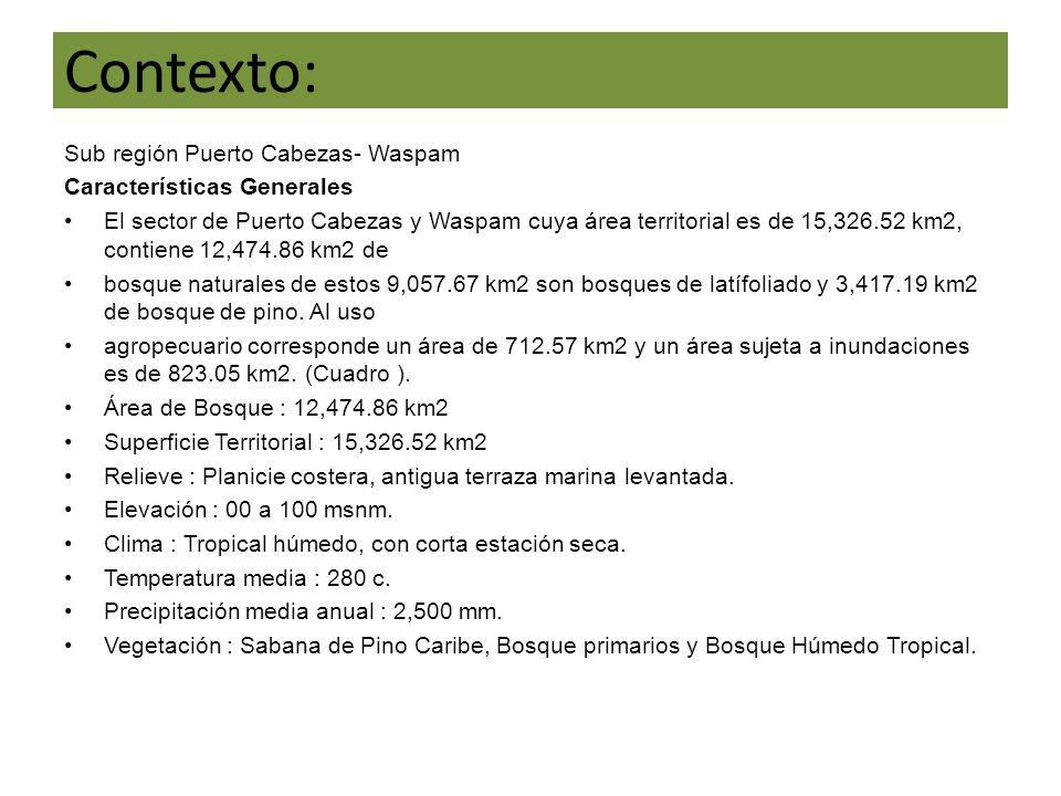 Contexto: Sub región Puerto Cabezas- Waspam Características Generales El sector de Puerto Cabezas y Waspam cuya área territorial es de 15,326.52 km2, contiene 12,474.86 km2 de bosque naturales de estos 9,057.67 km2 son bosques de latífoliado y 3,417.19 km2 de bosque de pino.