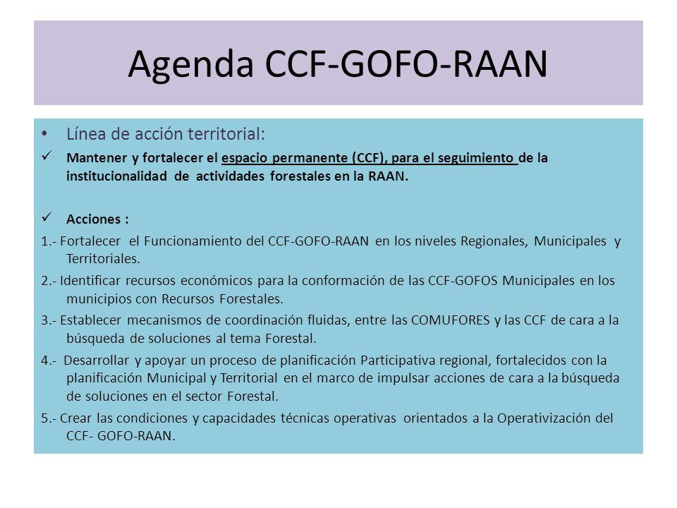 Agenda CCF-GOFO-RAAN Línea de acción territorial: Mantener y fortalecer el espacio permanente (CCF), para el seguimiento de la institucionalidad de actividades forestales en la RAAN.