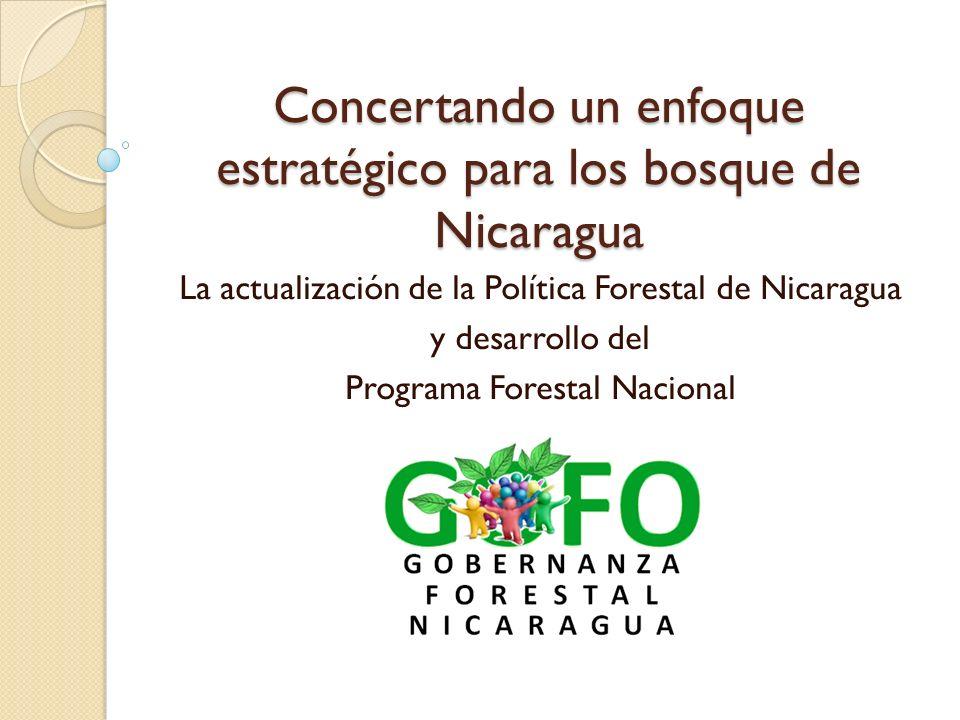 La Gobernanza Forestal en el marco internacional En 1997 los países de la ONU decidieron de que cada país llevará un Programa Forestal Nacional (IPF/IFF 1997) Un Programa Forestal Nacional tiene 2 características claves: Agenda 1.