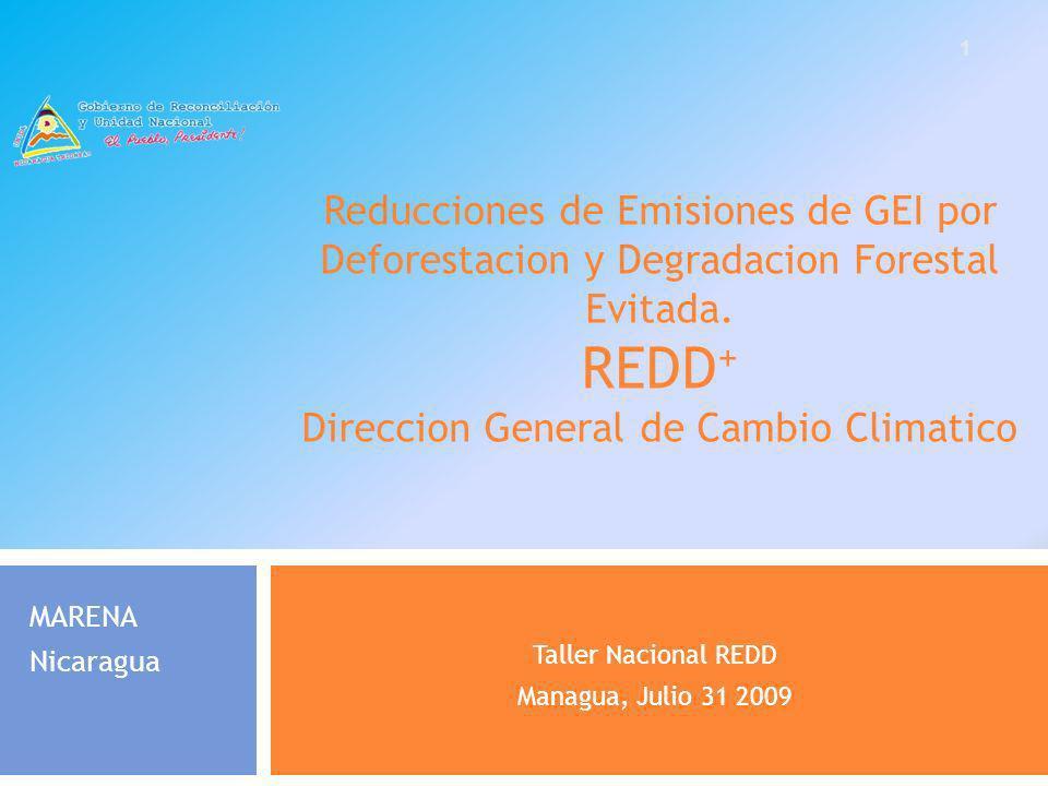 Reducciones de Emisiones de GEI por Deforestacion y Degradacion Forestal Evitada. REDD + Direccion General de Cambio Climatico Taller Nacional REDD Ma