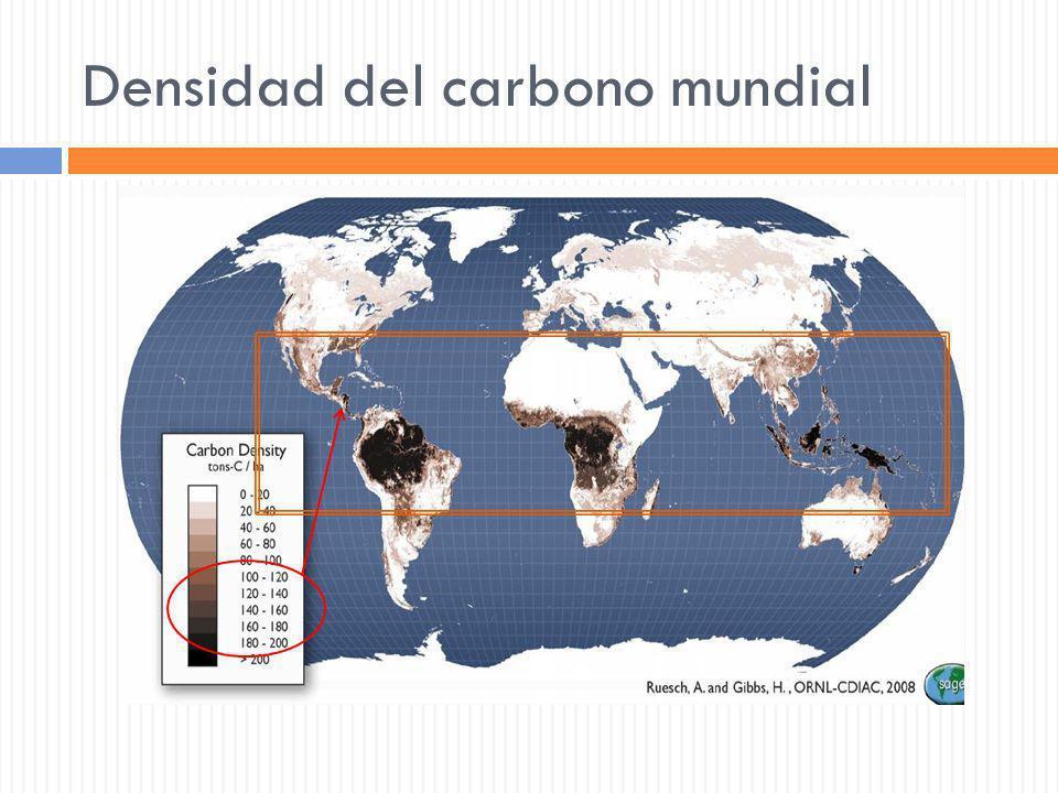 Densidad del carbono mundial