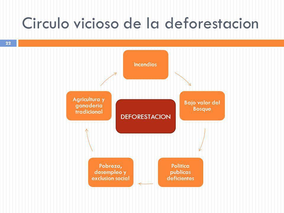 Circulo vicioso de la deforestacion 22 Incendios Bajo valor del Bosque Politica publicas deficientes Pobreza, desempleo y exclusion social Agricultura