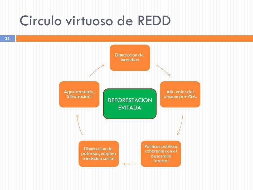 Circulo virtuoso de REDD 23 Disminucion de Incendios Alto valor del bosque por PSA. Politicas publicas coherente con el desarrollo forestal Disminucio