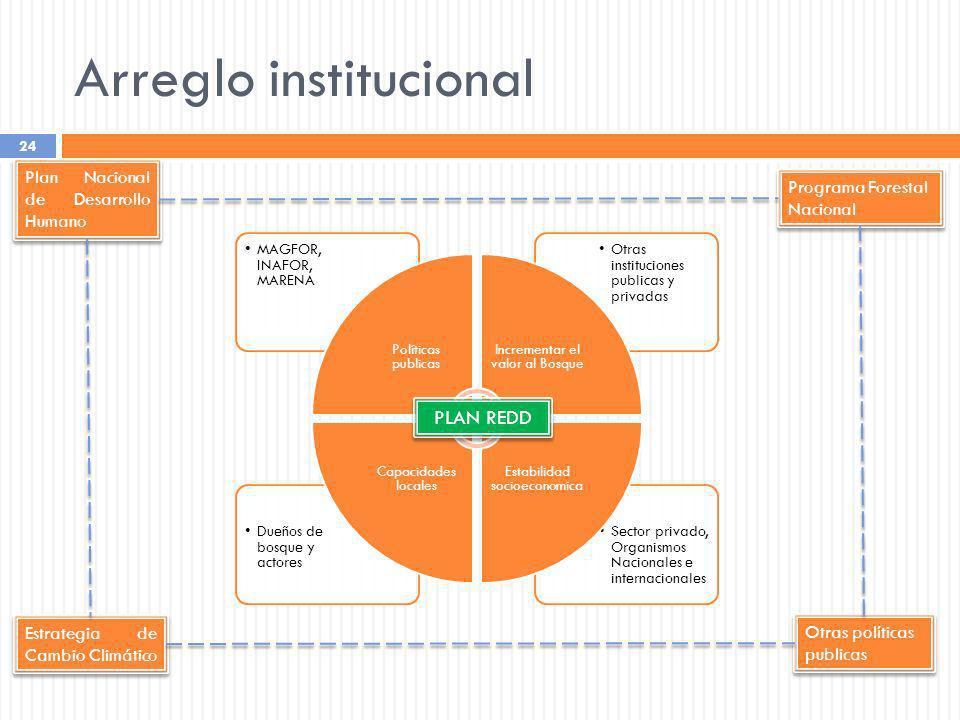 Arreglo institucional 24 Sector privado, Organismos Nacionales e internacionales Dueños de bosque y actores Otras instituciones publicas y privadas MA