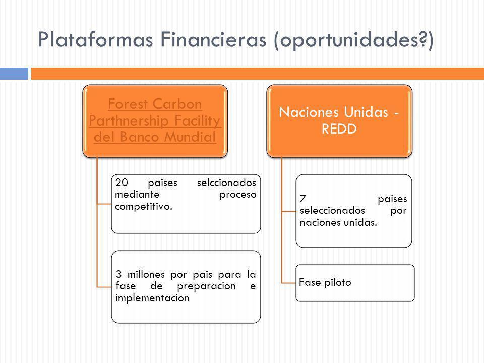 Plataformas Financieras (oportunidades?) Forest Carbon Parthnership Facility del Banco Mundial 20 paises selccionados mediante proceso competitivo. 3