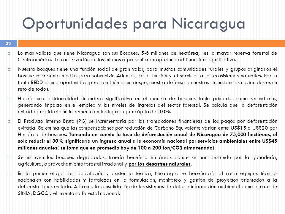 Lo mas valioso que tiene Nicaragua son sus Bosques, 5-6 millones de hectárea, es la mayor reserva forestal de Centroamérica. La conservación de los mi