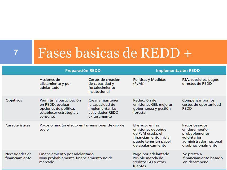 Fases basicas de REDD + 7